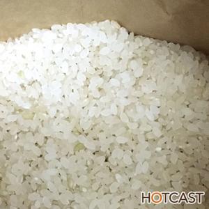 美味しい玄米ご飯 #544