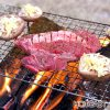 春と桜と肉と #635